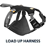 Amazon Com Mighty Paw Safety Belt Dog Seat Belt Latch