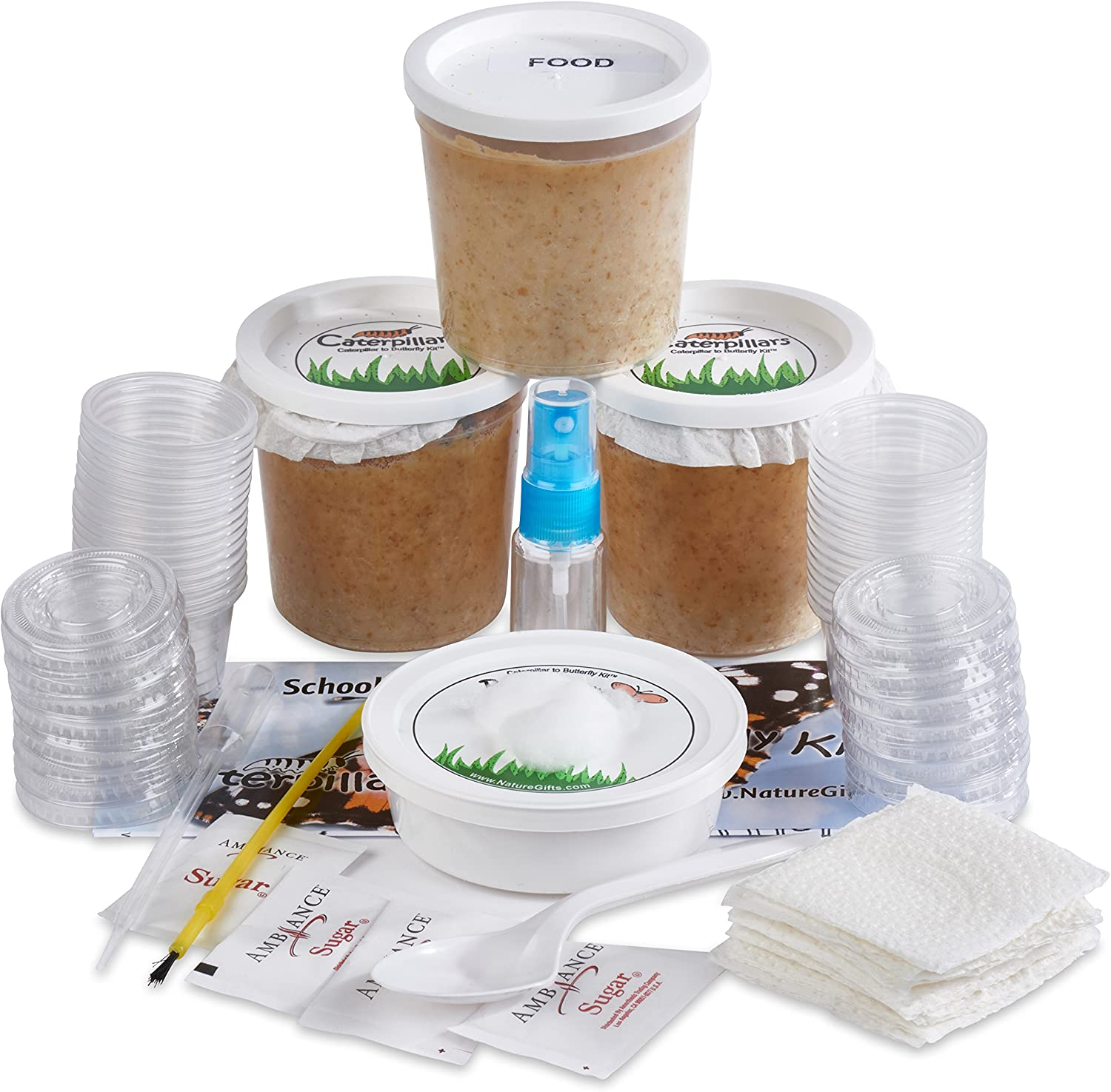 Nature Gift Store 30 Live Caterpillars Shipped Now: Butterfly Kit Refill for School Sized Kit with Extra Larva Rearing Supplies