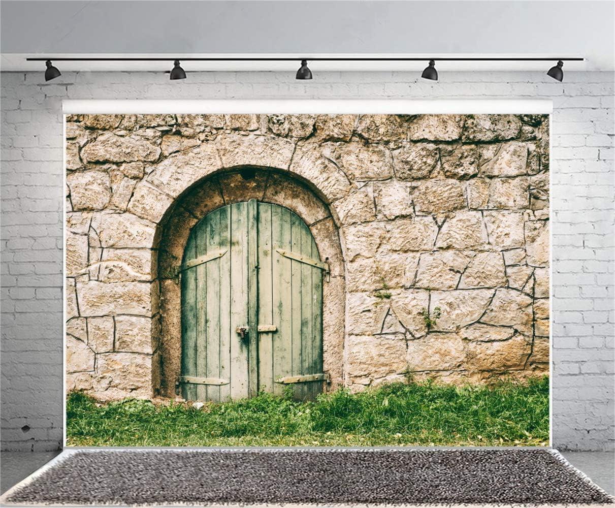 Laeacco 10x7ft Old Cellar Door Front Vinyl Photography Background Weathered Faded Padlock Green Wooden Door Rustic Stone Wall Backdrop Child Adult Cowboy Portrait Shoot Western Studio Props
