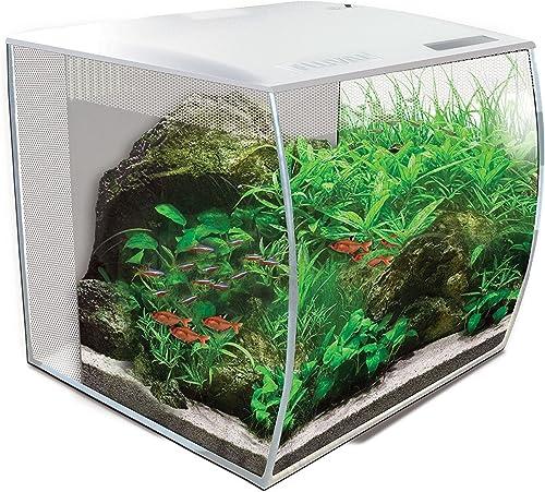 Fluval-Aquarium