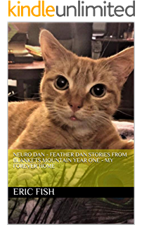 Call Of The Cats What I Learned About Life And Love From A Feral Colony Kindle Edition By Bloomfield Andrew Crafts Hobbies Home Kindle Ebooks Amazon Com