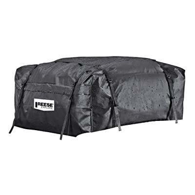 Reese Explore 1041100 Rainproof Car Top Carrier (15 Cubic Feet): Automotive