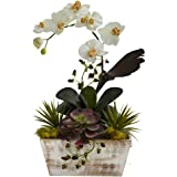 Nearly Natural 1326 Orchid and Succulent Garden with White Wash Planter, White