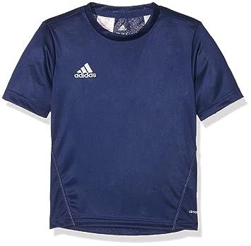adidas Camiseta De Hombre Core 15 Entrenamiento: Amazon.es: Zapatos y complementos