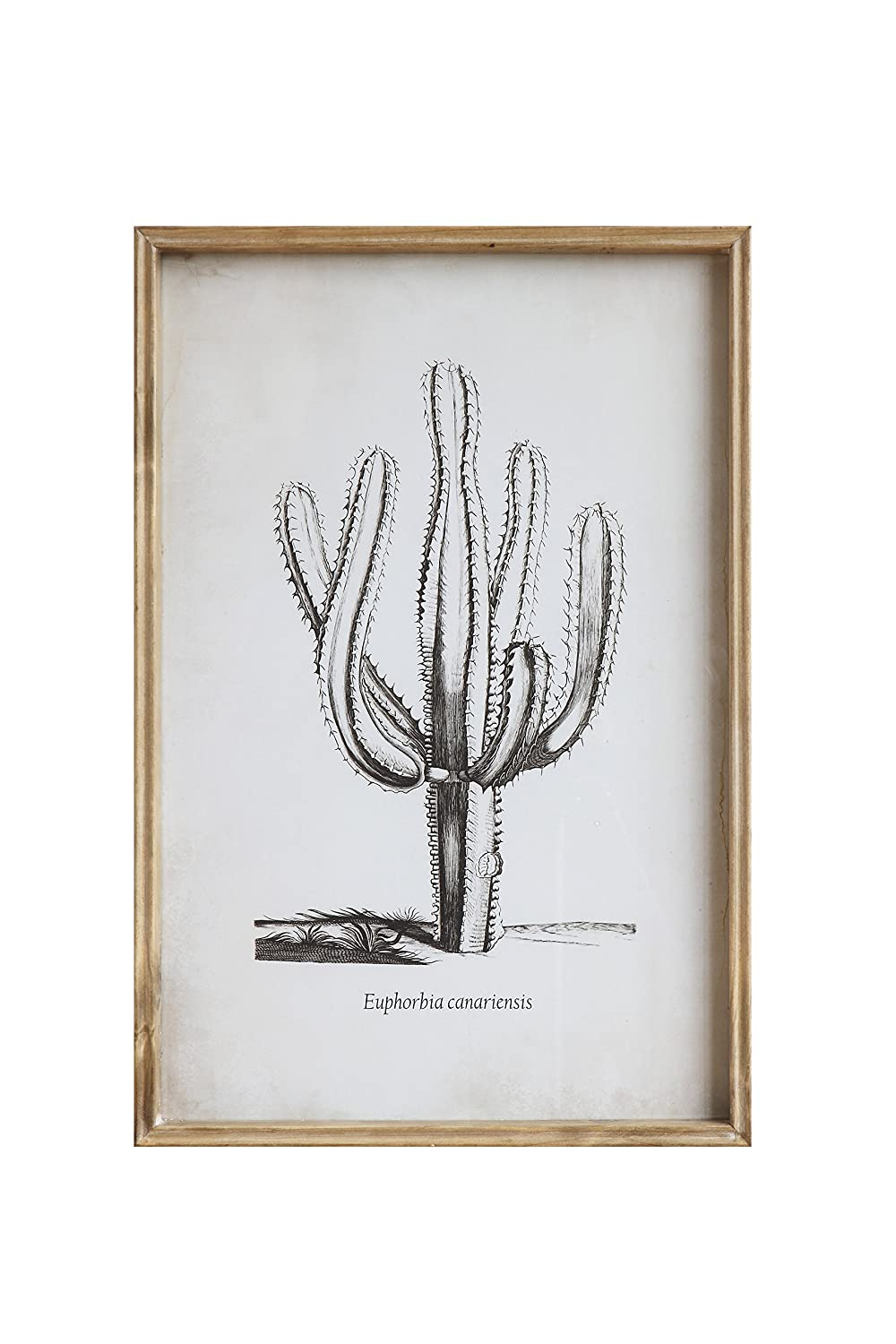 Bloomingville Cactus Wood Framed with Glass Wall Decor AH0097