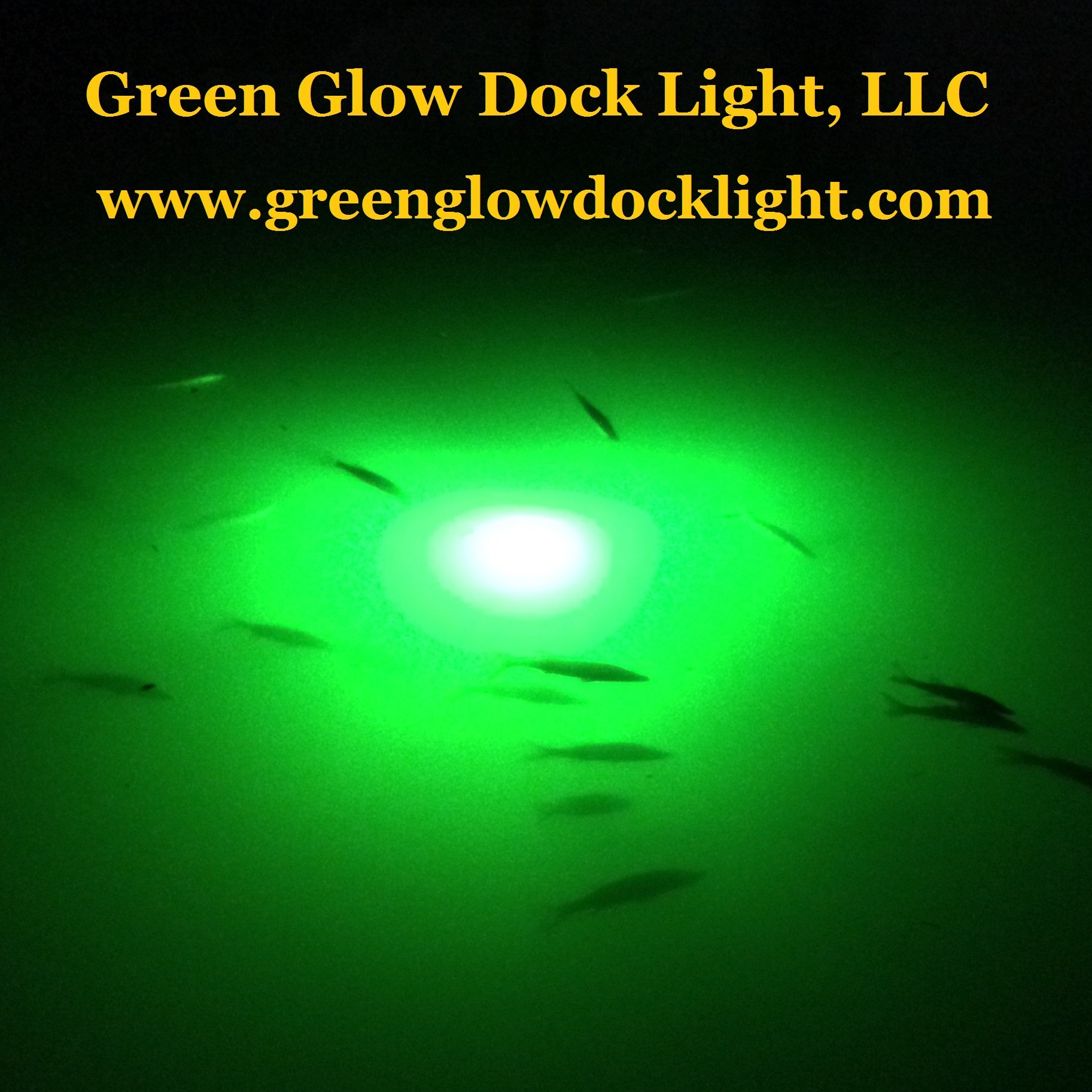 Bright Green Underwater Fishing Lights, Double Lamp Kit with 50' Cords Saltwater or Fresh by Green Glow Dock Light (Image #6)