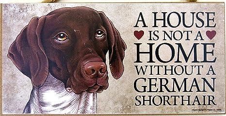 Alemán Cabello Corto, de color marrón y blanco, los amantes de los de perro