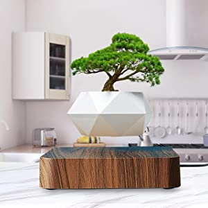 HOMEXXPRESS Levitating Plant- Floating Plant Pot - Magnetic Planter 360-Degree Rotation - Home Desk Office Kitchen Indoor Decor - Succulent Bonsai Air Plant - Maceta Flotante (Dark Brown)