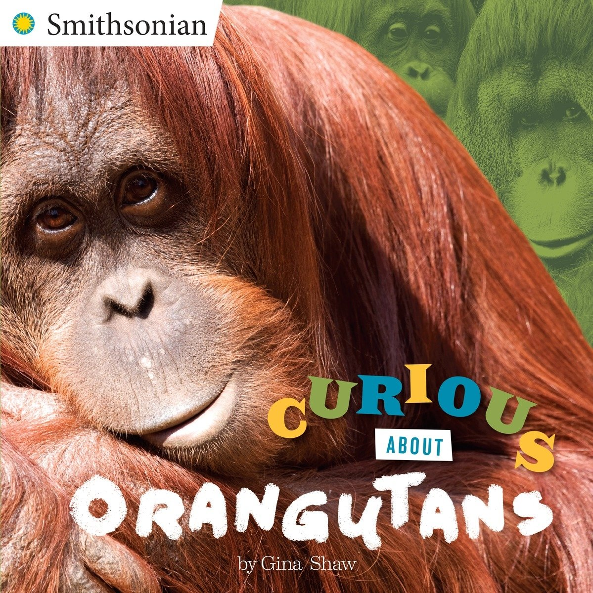 curious about orangutans book cover