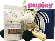 PupJoy Dog Day Box - Artisan Dog Goodie Subscription Box: Medium Dog