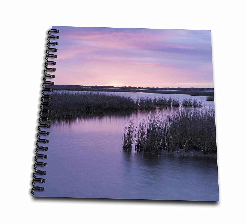 3dRose invierno db_94532_1 sobre soldador bemoles, Espiritu Santo bigdug, Texas US44 MPR0130 Maresa Pryor dibujo libro, 8 por 20,32 cm: Amazon.es: Hogar