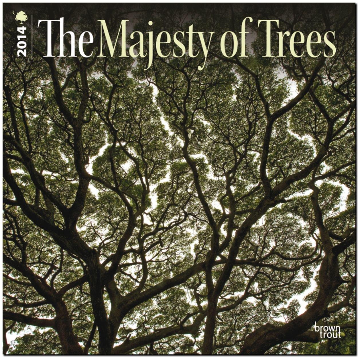 Majesty of Trees 2014 - Majestätische Bäume: Original BrownTrout-Kalender [Mehrsprachig] [Kalender]
