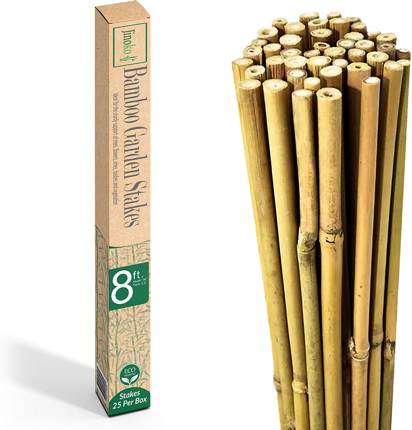 JINOKO Bamboo Stakes - Pack of 25 Premium 8 FT Garden Stakes for Plants - Natural Gardening Supports for Tomato, Cucumber, Peas, Beans & Trees - Indoor Outdoor Climbing Plant Support - Long Sticks