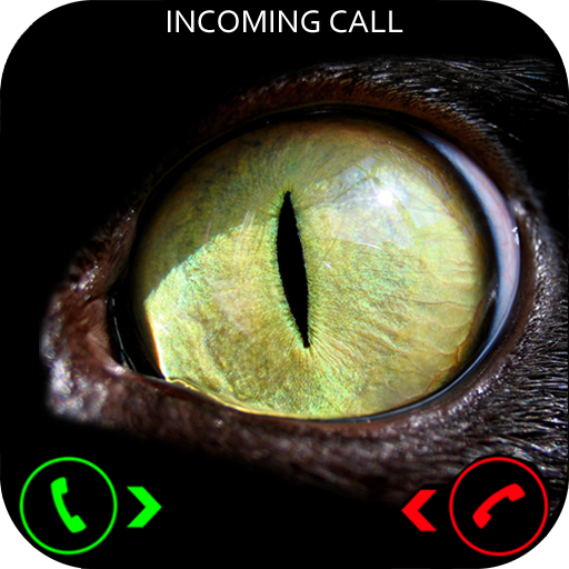 Evil Cat Prank Call