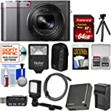 Panasonic Lumix DMC-ZS100 4K Wi-Fi Digital Camera (Silver) with 64GB Card + Battery & Charger + Case + Flash + LED Light & Bracket + Flex Tripod Kit