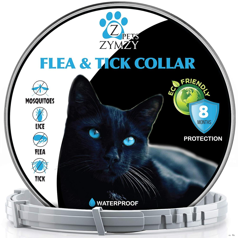Amazon.com: Zymzy Flea Collar for Cats - Flea and Tick ...