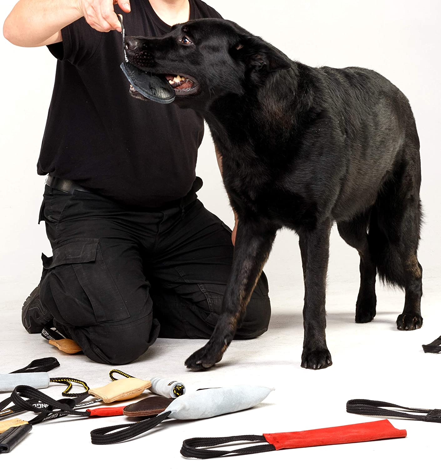 DINGO GEAR Dog Bite Tug Handmade of Black Grain Leather Strong Tug for Bite Training K9 IPO Agility and Just Fun S00232