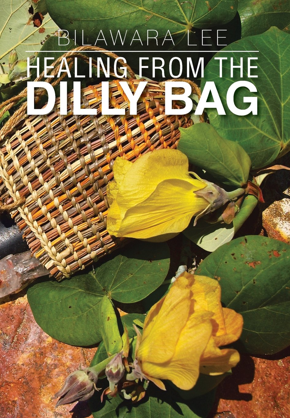 Download Healing from the Dilly Bag ebook