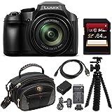 Panasonic LUMIX FZ80 4K Long Zoom 18.1 Megapixel Digital Camera Bundle