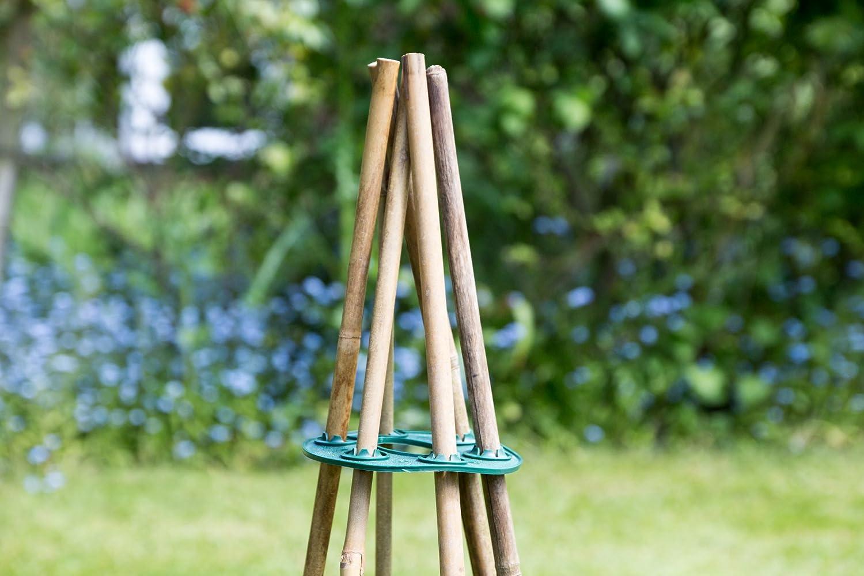 Cane Holder 13cm Bamboo Teepee Wigwam Support Grip Grip Sweat Pea Bean Tree