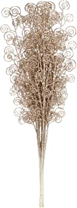 Sea Team 12-Pack Glitter Stem Ornaments, Decorative Curly Sticks, Glittery Twigs, Picks, Branches for Christmas Tree, Small Vase, Holiday, Wedding, Party (27 Inches, Champagne)