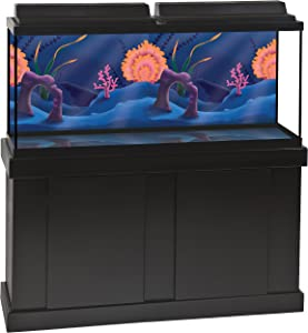 GloFish Color Changing Background 1 Count, For Aquariums Up To 25 Gallons