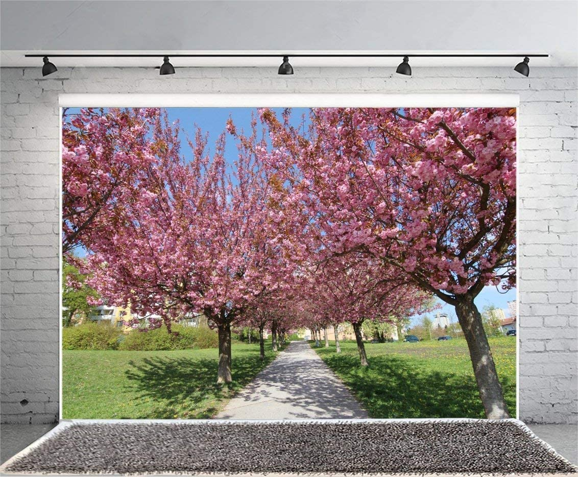 9x6ft Vinyl Photography Backdrop Spring Cherry Blossom Valentines Day Sunshine Grass Field Blue Sky White Cloud Trees Nature Romantic Wallpaper Background Children Adult Backdrop