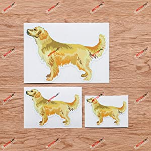 Golden Retriever Dog Vinyl Decal Sticker - 3 Pack Glossy Gold, 3 Inches, 4 Inches, 6 Inches - for Car Boat Laptop Cup Phone