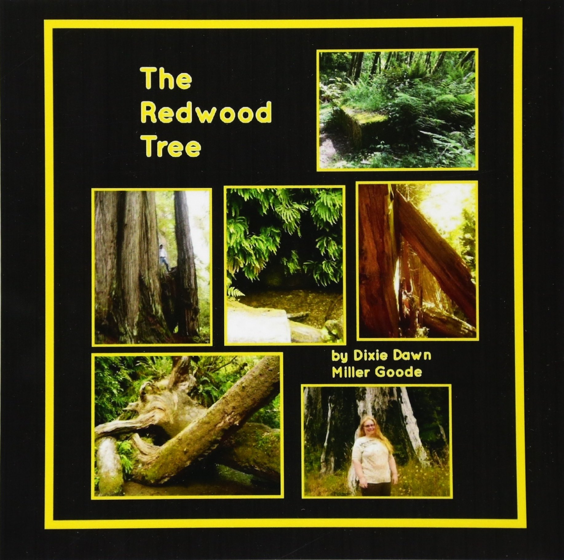 Download The Redwood Tree ebook