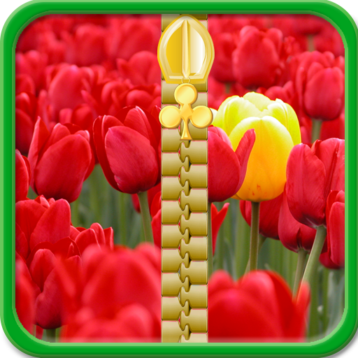 Spring Zipper Lock Screen