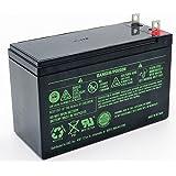 Generac 0G9449 Generator Battery