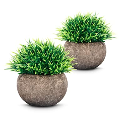 Fakes Plants(2019 New Version) 2pcs Mini Artificial Plastic Plants with Air Purifying and Formaldehyde Absorption Photocatalyst Materials Suitable for Home Kitchen,Living Room and Office Decor