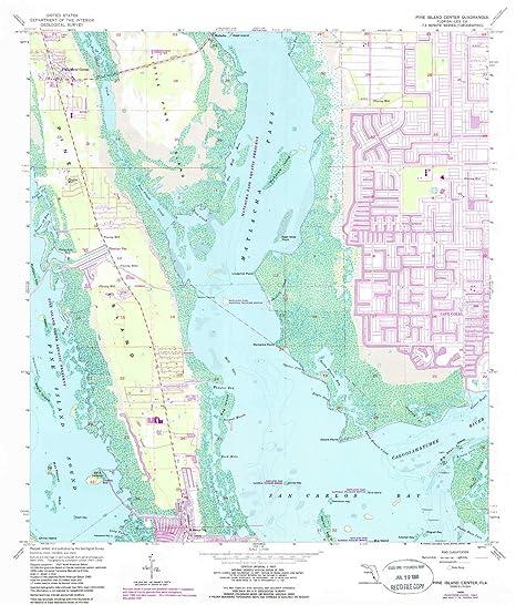 Amazon.com : YellowMaps Pine Island Center FL topo map, 1 ...