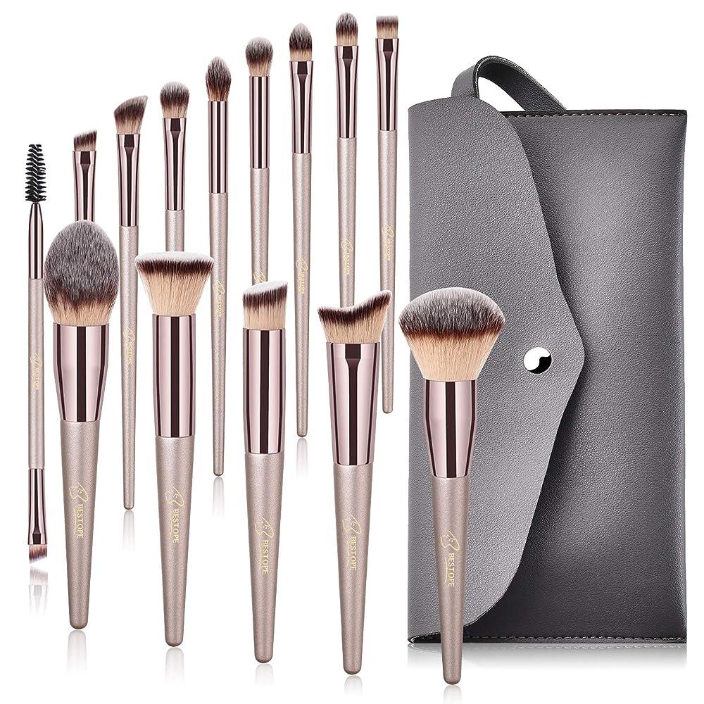 14 Pcs Makeup Brushes, Tapered Handle Series Professional Premium Synthetic Makeup Brush Set
