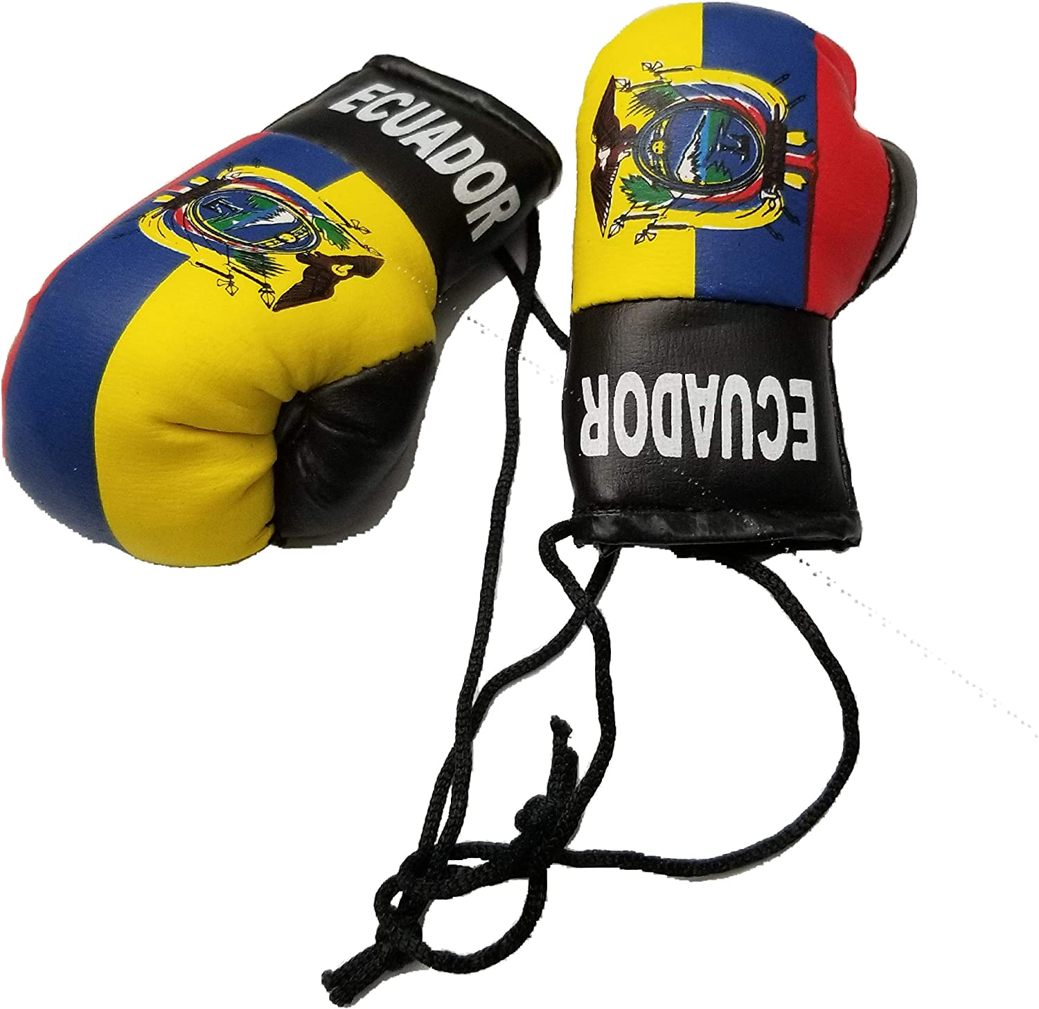 COSTA RICA Country Flag Mini BOXING GLOVES . NEW