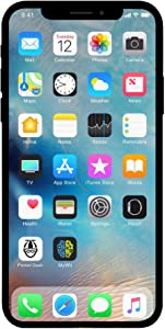 Apple iPhone X, 256GB, Silver - Fully Unlocked (Renewed)