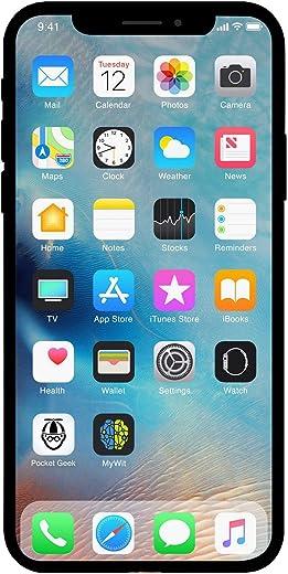 Apple iPhone X, 256GB, Silver - Fully Unlocked (Renewed)