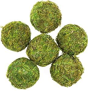 Tongcloud 6pcs Natural Green Moss Decorative Ball,Natural Green Moss Balls Handmade Decorative Moss Hanging Balls for Garden Patio Home Table Decor Party Weddings Display Props Decor (Green, 6)