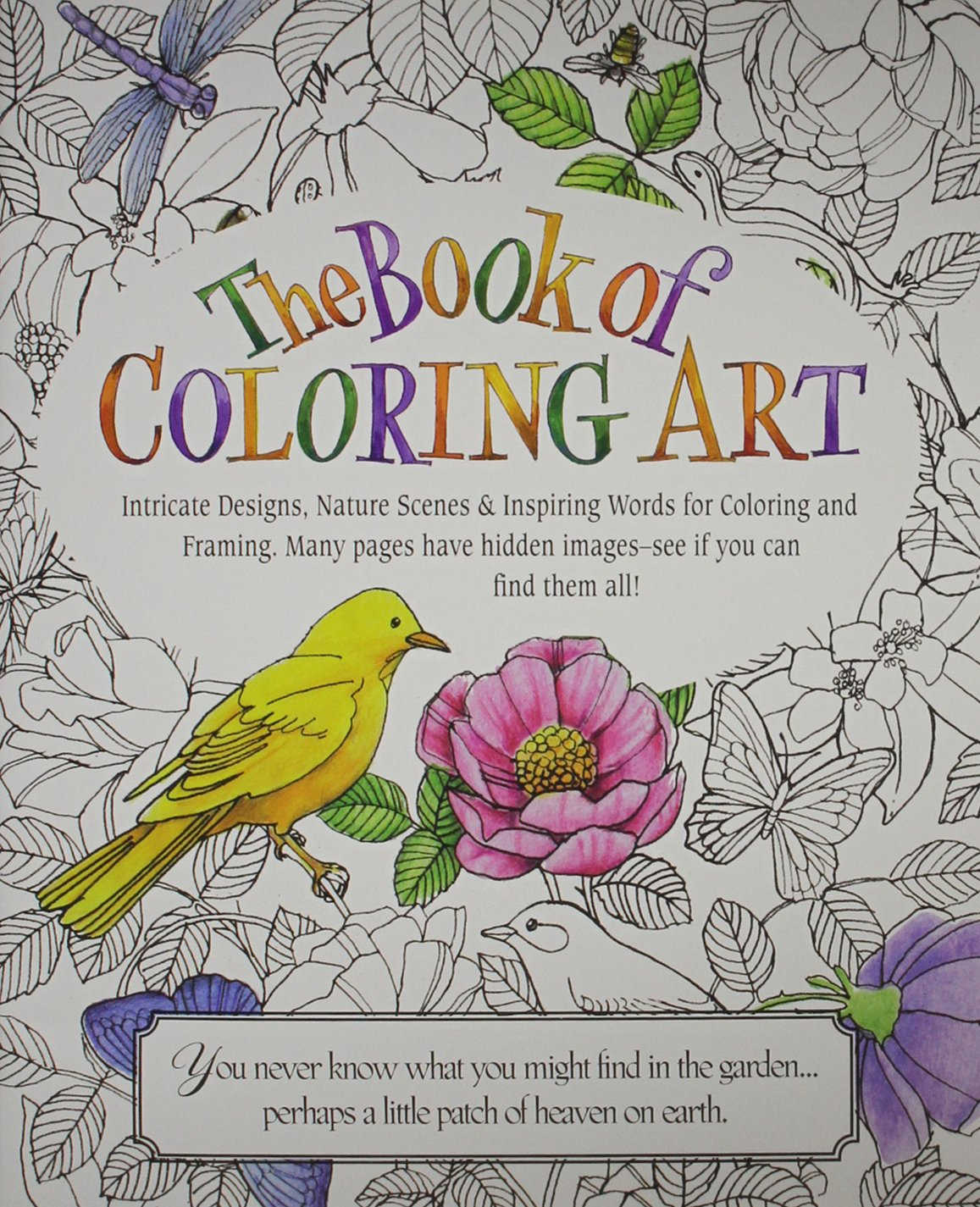 amazon com the book of coloring art 9780996386883 product