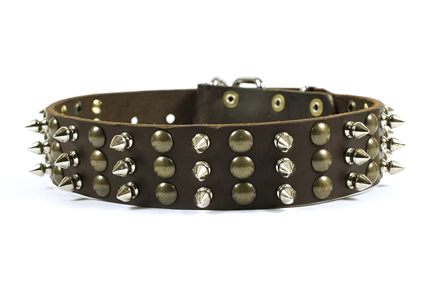 Dean and Tyler Tolerance , Dog Collar with Beautiful Brass Stud and Nickel Spikes Brown Size 34-Inch by 1-1 2-Inch Fits Neck 32-Inch to 36-Inch