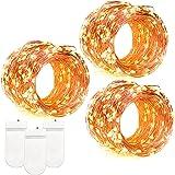 DecorNova 60-LED Micro Lights String Fairy Lights,Copper Wire,Warm White, 3-Set