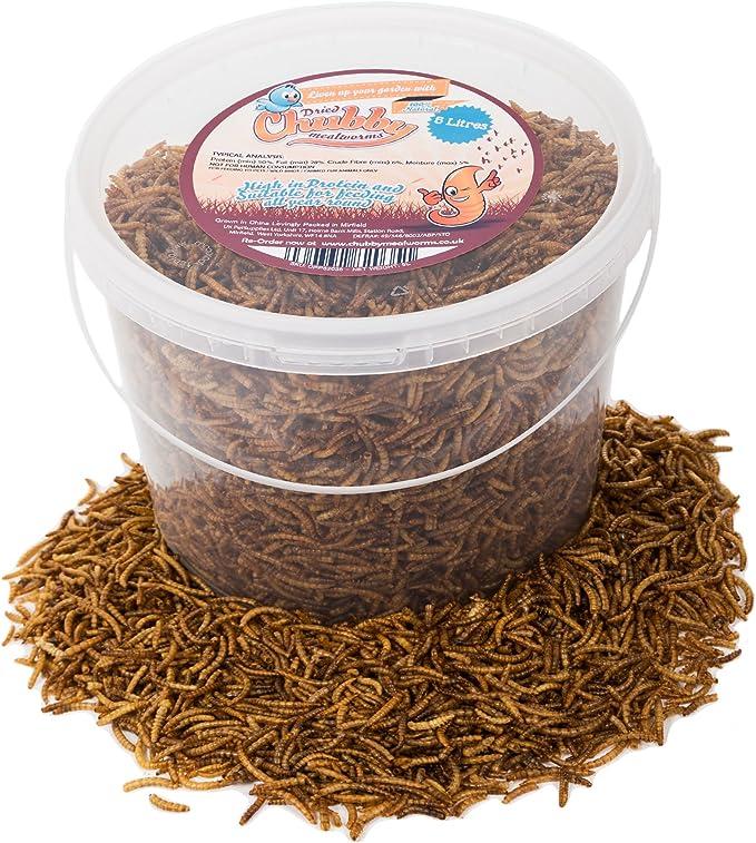5 litros gusanos disecados para comida de pájaros.