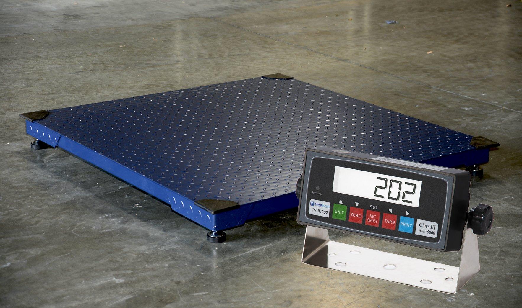 CS2010 2'x2' Floor Scale w/PS-IN202 Indicator
