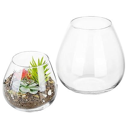 Amazon Com Set Of 2 Decorative Modern Round Clear Glass Display