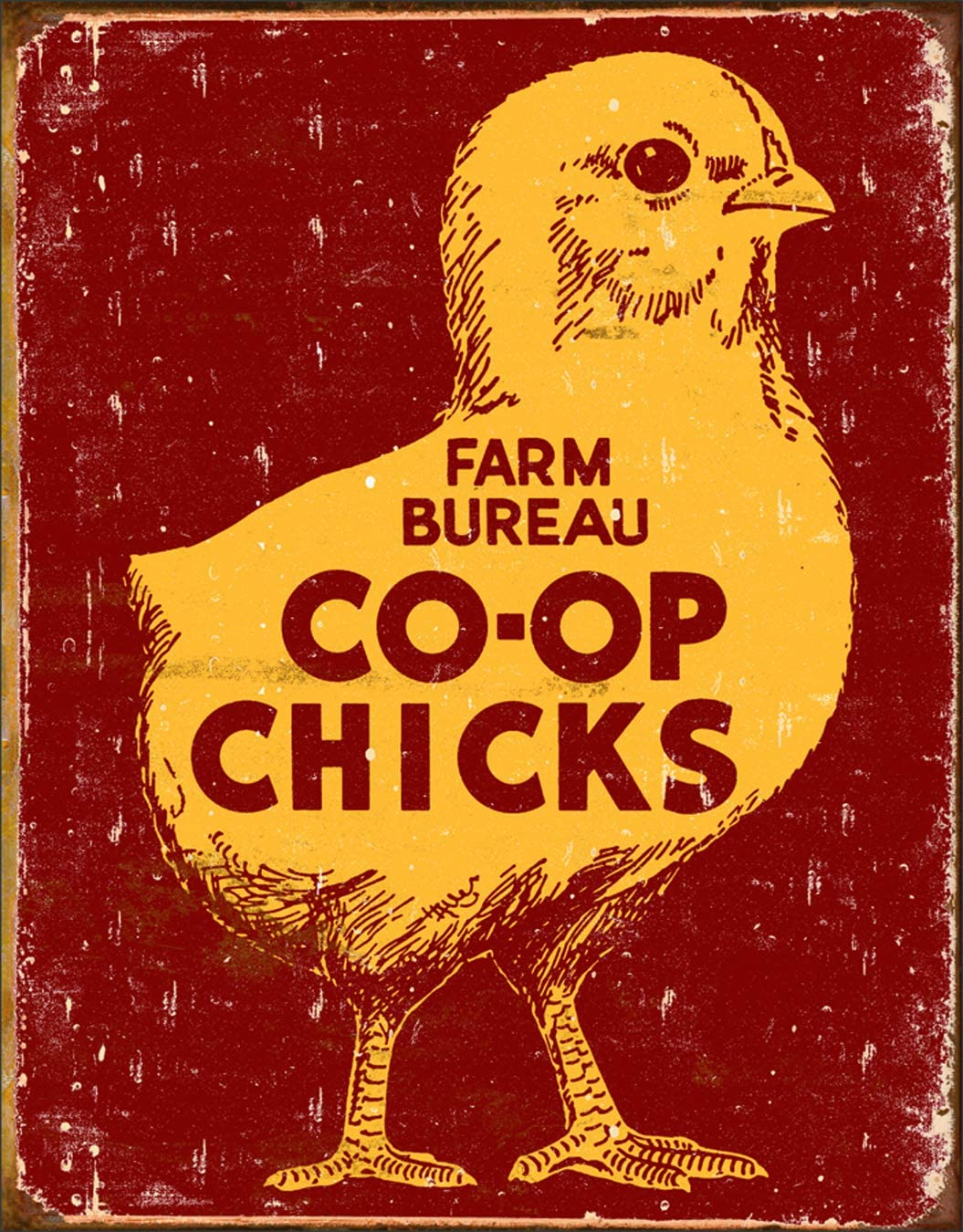 "Desperate Enterprises Farm Bureau Co-Op Chicks Tin Sign, 12.5"" W x 16"" H"