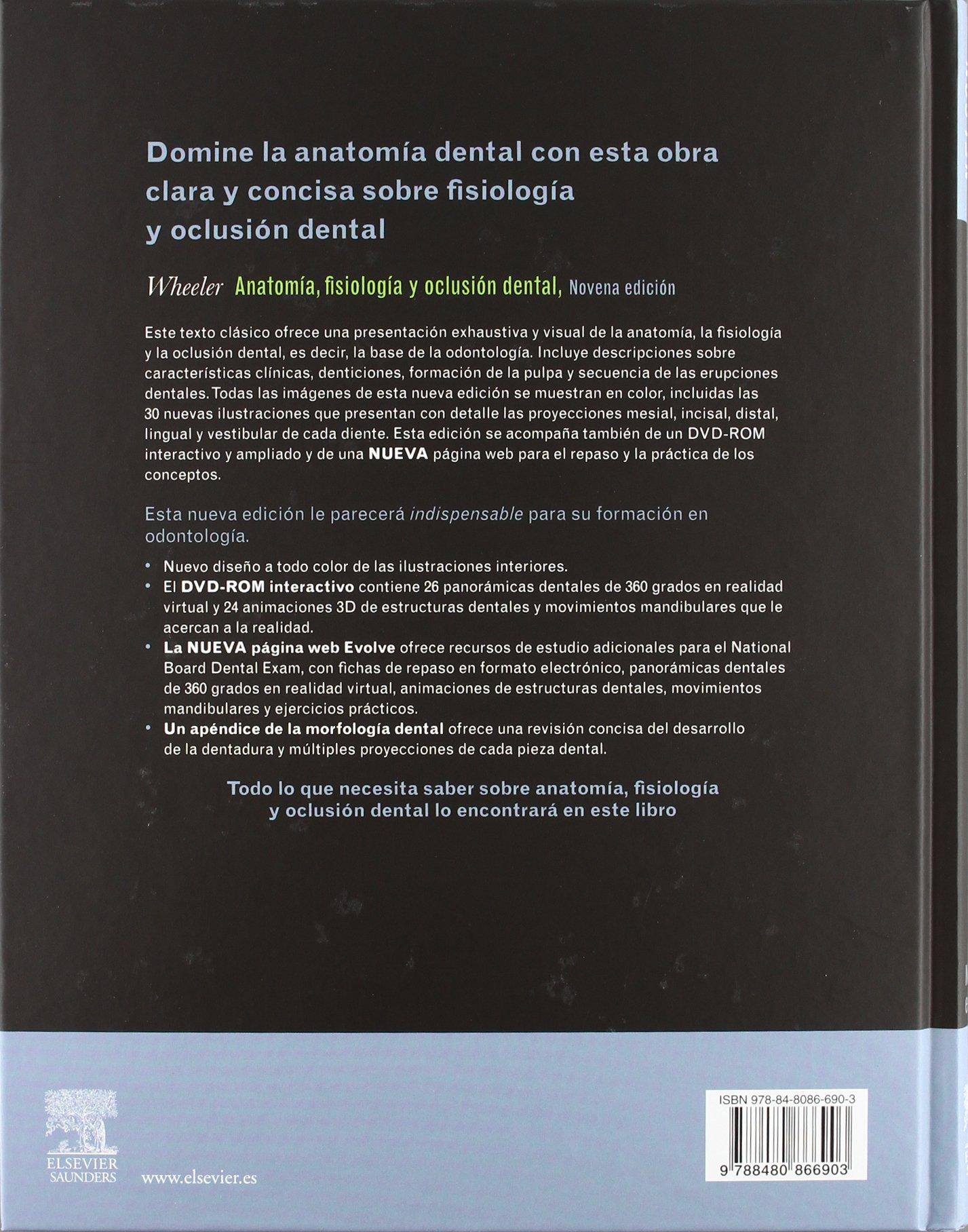 WHEELER. Anatomía, Fisiología y Oclusión Dental + DVD y evolve: S.J. ...