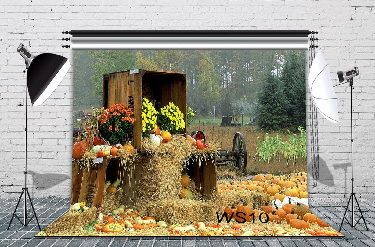 LB Halloween Pumpkin Backdrop for Photography 7x5ft Vinyl Rustic Farm Harvest Season Fall Backdrop for Party Event Portrait Photo Booth Background by LB (Image #3)