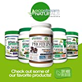 Vital First Daily Greens - Over 50 Amazing