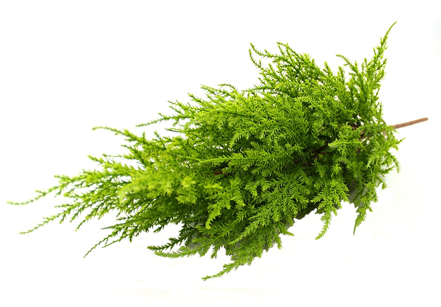 Artificial 56cm High Mini Cedar Pine Conifer Tree Plant – Outdoor Use – Hanging Baskets, Window Boxes & Patio Planters … (Green) Blooming Artificial