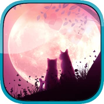Lovers Cats Interactive Live Wallpaper